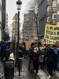 School students demonstration in Brussels on 24.01.2019