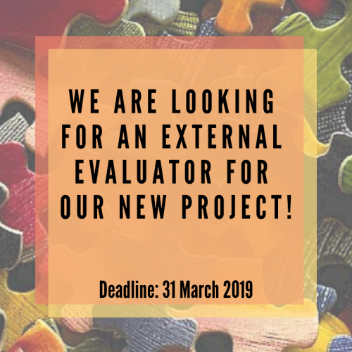 Call for External Evaluator - Inclusive Schools Project